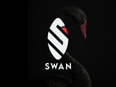 swan logo business card swan logo symbol ambigram monogram logo branding vector logo illustration icon design