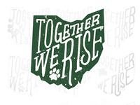 Unused Ohio Campaign Logo