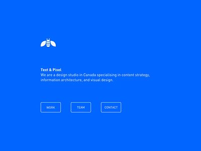 Text & Pixel Website Homepage Concept flat branding vector ux typography design ui corporate clean bee minimal simple din white blue
