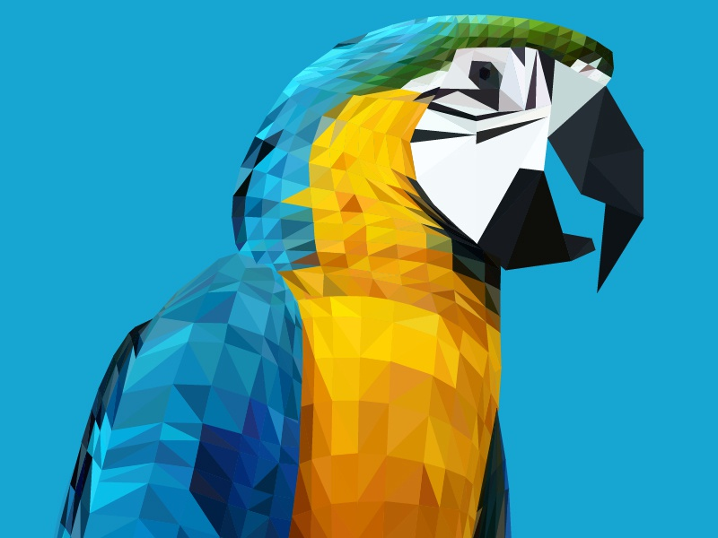 Parrot Triangle Illustration - Ara Ararauna parrot illustration triangle