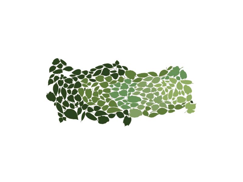 Tree Density of Turkey green tree leaf map illustrator vector infographic