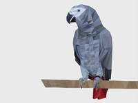 Lowpoly Illustration of a Parrot