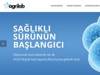 Agrilab.com.tr Web Development