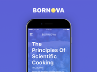 Bornova - blog app user interface