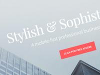 Stylish & Sophisticated
