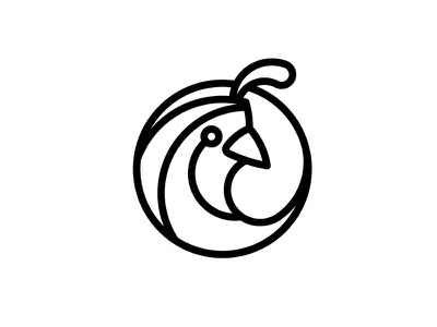 Quail logo illustration simple concept branding bird animal design graphic identity logo
