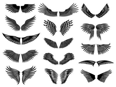 Natural Wings Set
