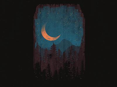 Those Summer Nights... forest moon nature wilderness wild mountains landscape night summer