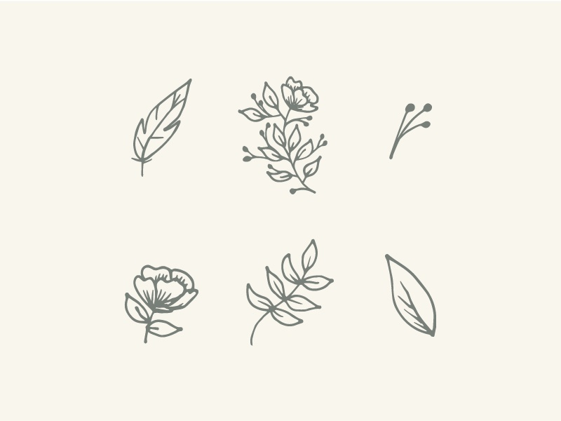 Illustrations icons sketch flower feather earth tones floral illustrations