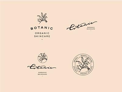 Botanic botanic botanical illustration handlettering organic typography lockup logo