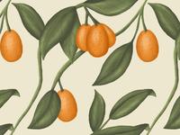 Kumquat pattern