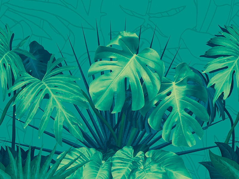 Botanical floral color photoshop repeat vertical botanical