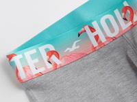 Flamingo Waistband