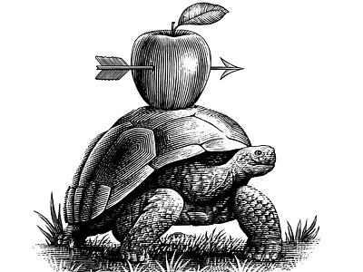 The Tortoise Illustration ink art pen and ink engraving line art woodcut scratchboard steven noble