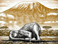 The Sleeping Elephant Illustration scratchboard illustrator pen and ink artwork woodcut illustration steven noble