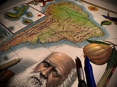 Charles Darwin's Voyage engraving scratchboard pen and ink illustration etching line art ink art woodcut steven noble