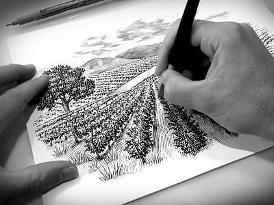 Scratchboard woodcut landscape illustration engraving scratchboard pen and ink illustration etching line art ink art woodcut steven noble