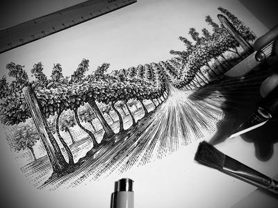 Scratchboard Custom Illustrations artwork pen and ink engraving line art illustration illustrator woodcut scratchboard steven noble