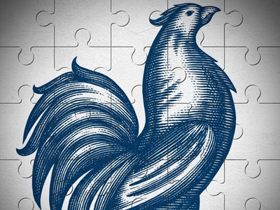 Sauze Tequila Rooster vector branding design pen and ink woodcut woodcuts engraving illustration line art steven noble