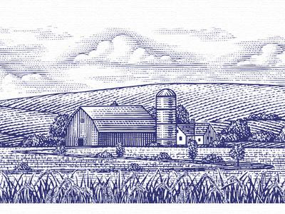 Hinode Rice vector branding design etching illustrator illustration engraving woodcuts steven noble
