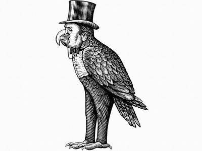 Parrot Distilling pen illustration pen and ink conceptual art line art woodblock engraving woodcut scratchboard logo