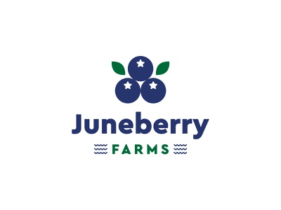 Juneberry Farms - Part 1 print berries green blue fish ecommerce packagaing leaves fruit typography identity logo branding and identity branding water farms juneberry
