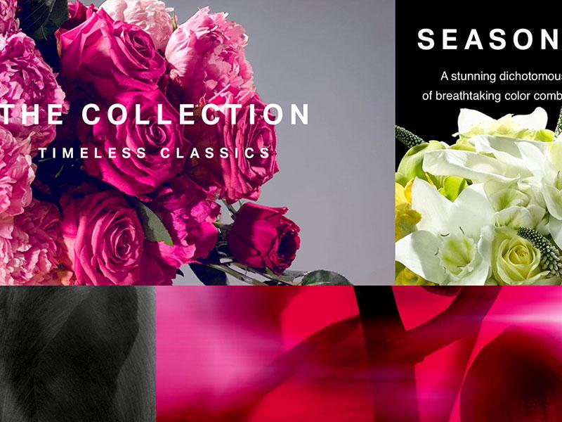 Bloom Flowers online flowers type responsive web typography