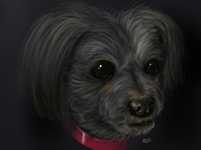 The Dog fuzz fur collar procreate dog