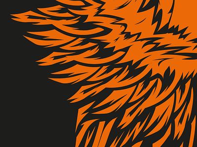 Illustration design feathers bird vector illustration