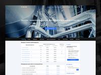Riccom - resposive website