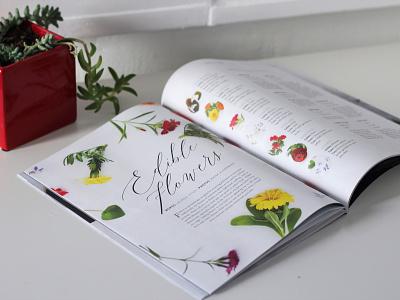Editorial Design for Edible Magazine layout magazine florida edible editorial