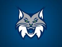 Minnesota Lynx Secondary
