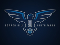 Copper Hill Ninth Ward Falcons Primary
