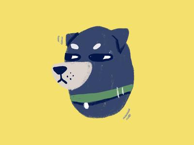 Hi doggy 2
