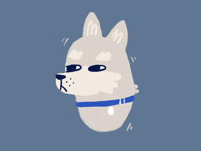Hi doggy 3