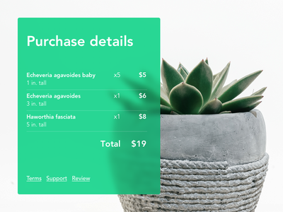 Email receipt: Daily UI 017 web ecommerce purchase succulent plant checkout receipt dailyui dailyui017