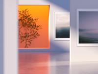 Gallery ×
