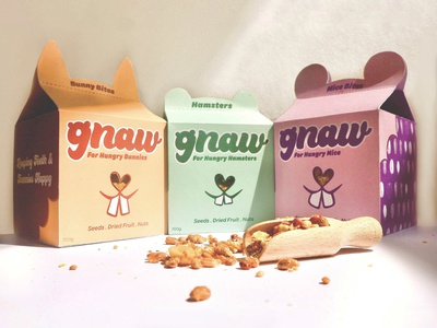 Final gnaw packaging design for STB Brief pet food branding typography design packaging