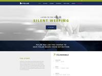 Polar Environmental Website Design WIP