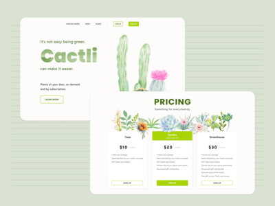 Cactli - Plant Subscription Concept