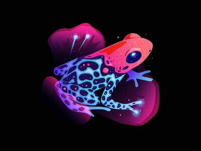 frog fantasy light dream frog space