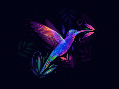 Colibri World