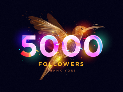 5000 Followers colibri dribbble followers 5000