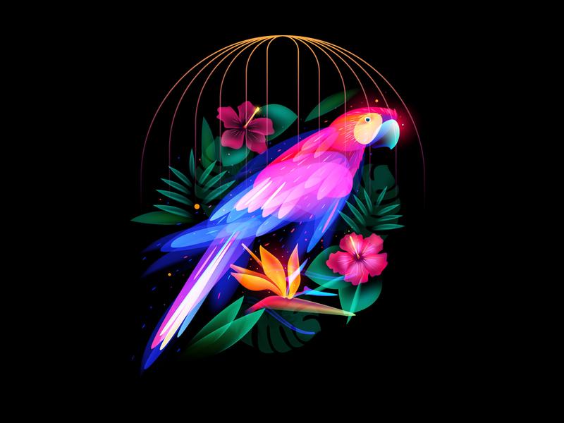 Fantasy Parrot cage bird jungle flower behance set adobeillustator illustation fantasy light parrot