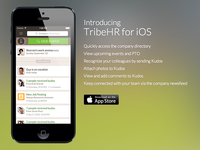 Obligatory Bokeh iOS Landing Page