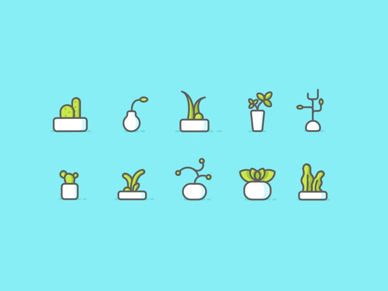 Plants Iconography minimal succulent illustration iconography icons cactus plants
