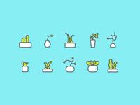 Plants Iconography