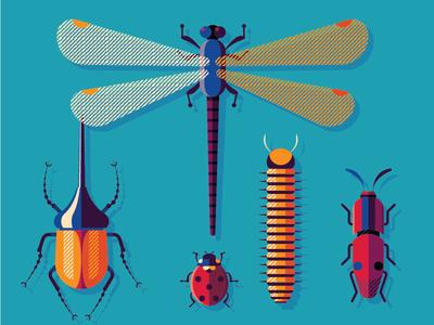 Bugs Family