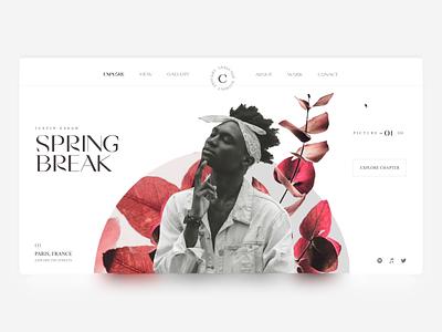 Spring Break & Stern Traits - Justin Essah type uidesign layout code typography ui website web interactive pixi webgl slider javascript coded interaction photography