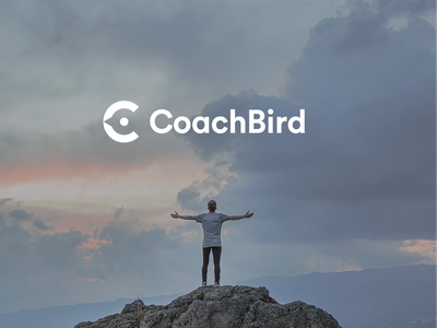 Coachbird branding blue clean branding brand bird logo logo design logotype bird logo